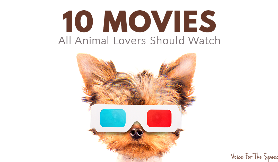 10 Must-See Movies That All True Animal Lovers Should Watch