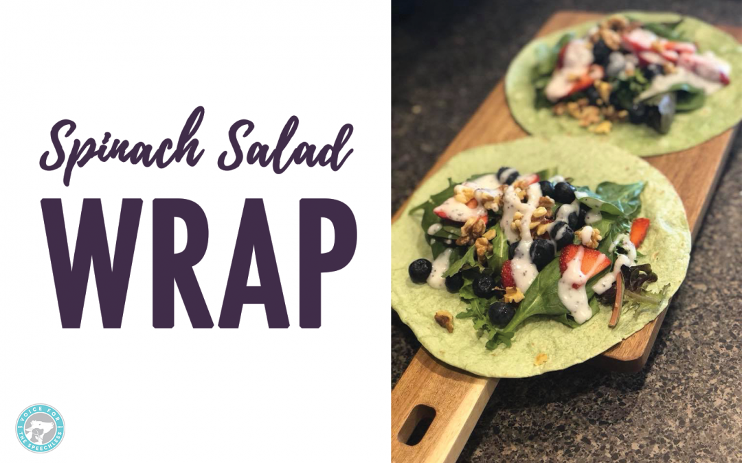Vegan Spinach Salad Wrap
