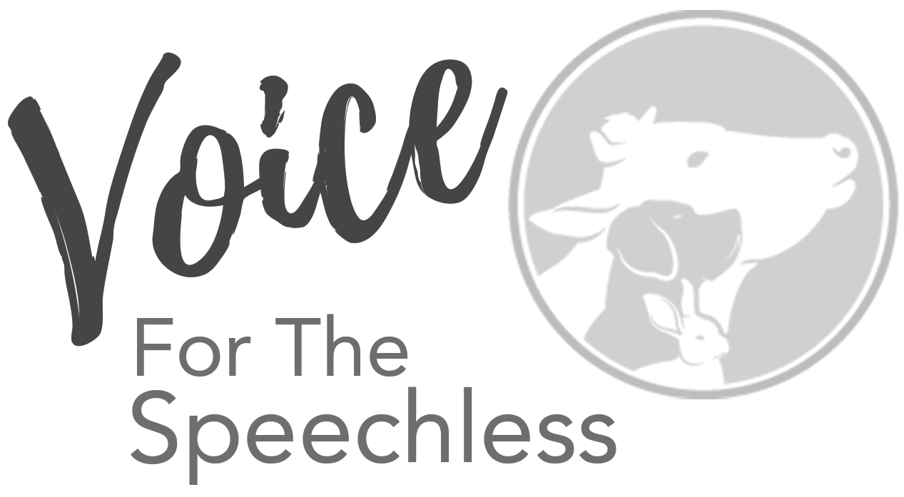 Voice For The Speechless