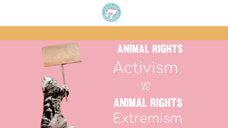 Animal Rights Activism VS Animal Rights Extremism